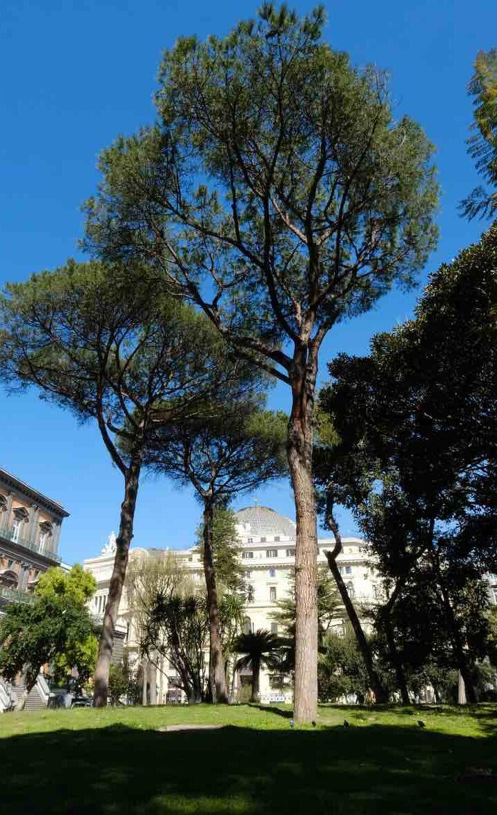 Napoli: riaprono i cortili e il Giardino Romantico del Palazzo Reale