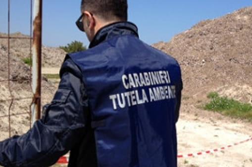 https://www.zerottounonews.it/wp-content/uploads/2021/06/carabinieri-noe.jpg