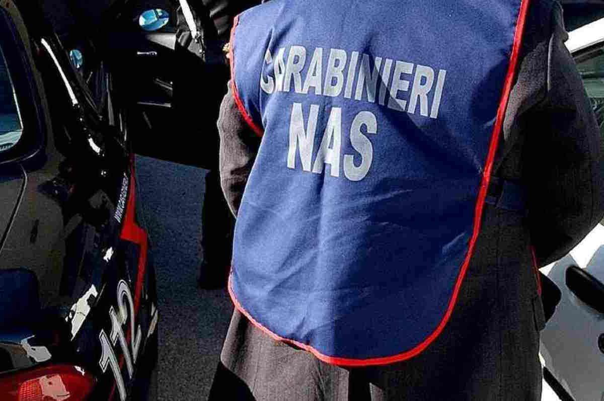 Palma Campania: oltre 5mila euro di multa e 100 chili di alimenti sequestrati in ristoranti etnici