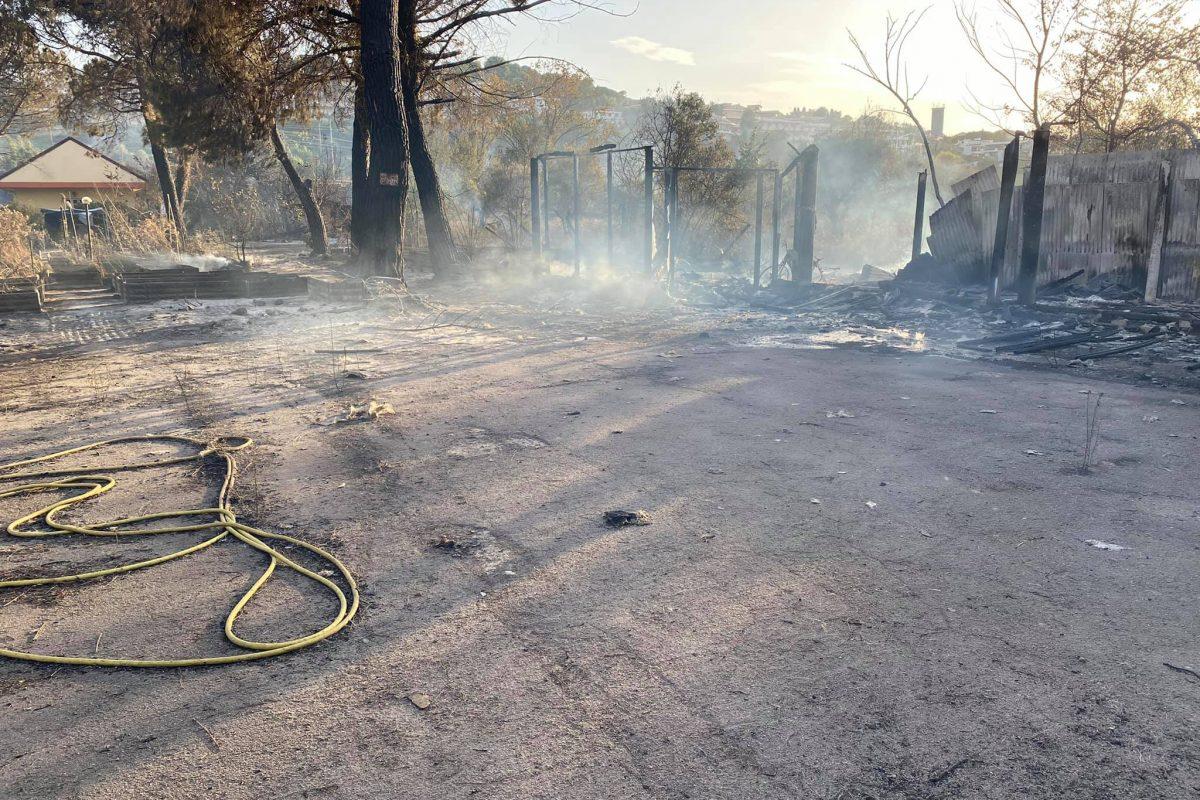 Incendi anche a Pescara: brucia la Pineta Dannunziana