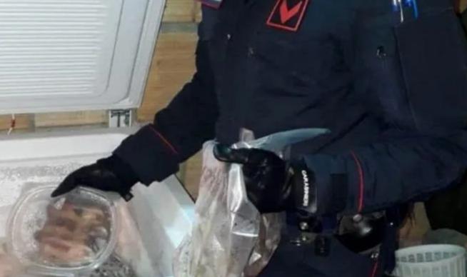 Ghiri uccisi e congelati, pronti per essere mangiati: la nuova pietanza alle cene della 'Ndrangheta